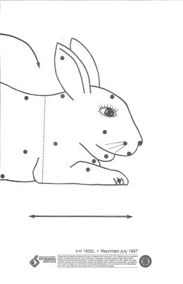 Image of Rabbit Wall Chart Leader Guide publication