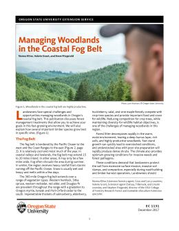 "Cover image of ""Managing Woodlands in teh Coastal Fog Belt"""