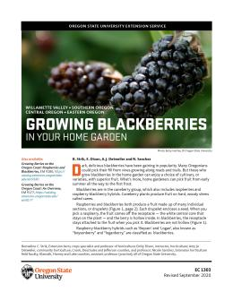 Image of Growing Blackberries in Your Home Garden publication