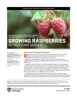 Cover of Growing Raspberries in Your Home Garden