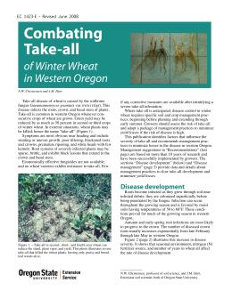 Image of Combatting Take-All of Winter Wheat in Western Oregon publication