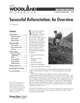 Image of Successful Reforestation: An Overview publication