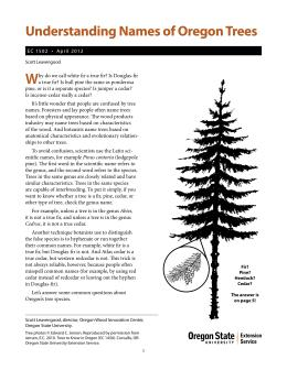 Image of Understanding Names of Oregon Trees publication