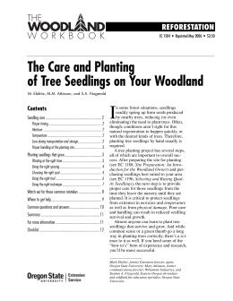 Image of The Care and Planting of Tree Seedlings on Your Woodland publication
