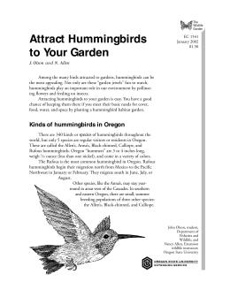 Image of The Wildlife Garden: Attract Hummingbirds to Your Garden publication