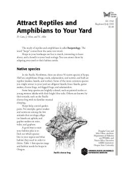 Image of The Wildlife Garden: Attract Reptiles and Amphibians to Your Yard publication