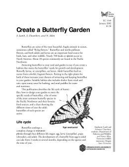 Image of The Wildlife Garden: Create a Butterfly Garden publication