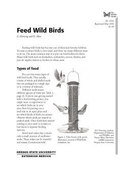 Image of The Wildlife Garden: Feed Wild Birds publication