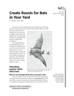 Image of The Wildlife Garden: Create Roosts for Bats in Your Yard publication