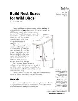 Image of The Wildlife Garden: Build Nest Boxes for Wild Birds publication