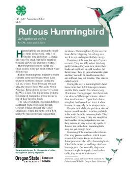 Image of The Wildlife Garden: Rufous Hummingbird (Selasphorus rufus) publication