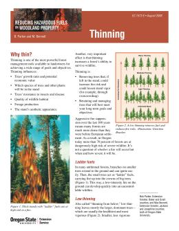 Image of Reducing Hazardous Fuels on Woodland Property: Thinning publication
