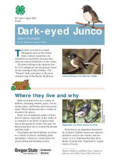 Image of The Wildlife Garden: Dark-eyed Junco (Junco hyemalis) publication