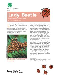Image of The Wildlife Garden: Lady Beetle (Hippodamia convergens) publication