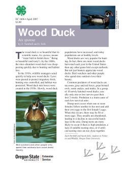 Image of The Wildlife Garden: Wood Duck (Aix sponsa) publication