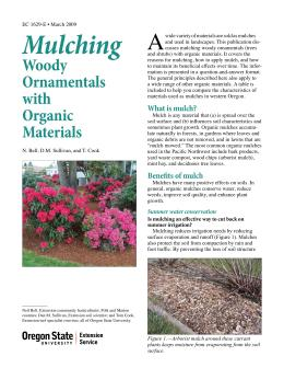 Image of Mulching Woody Ornamentals with Organic Materials publication