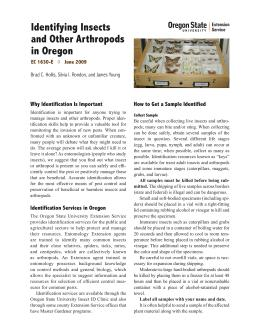 Image of Identifying Insects and Arthropods in Oregon publication