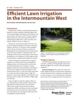 Image of Efficient Lawn Irrigation in the Intermountain West publication