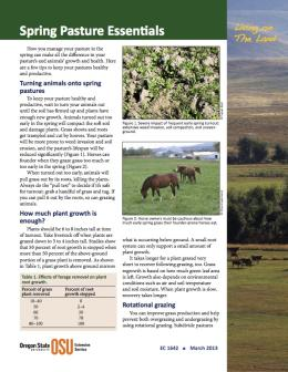 Image of Living on the Land: Spring Pasture Essentials publication