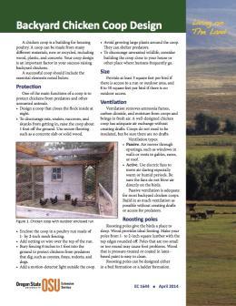 Image of Living on the Land: Backyard Chicken Coop Design publication