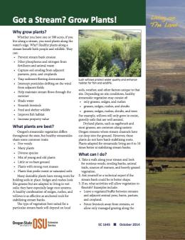 """Image of """"Living on the Land: Got a Stream? Grow Plants!"""" publication"""