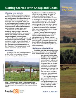 Cover image of Living on The Land: Getting Started with Sheep and Goats