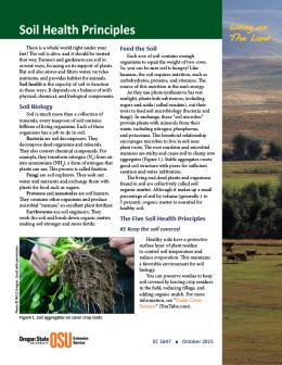 This is the cover of Living on the Land: Soil Health Principles