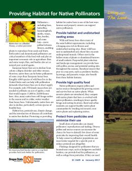 "Cover image of ""Living on The Land: Providing Habitat for Native Pollinators"" publication"
