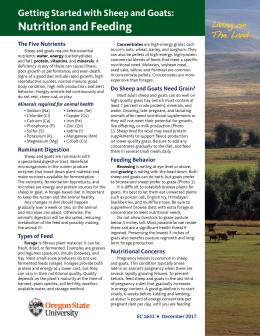 """Cover image of """"Living on the Land: Getting Started with Sheep and Goats: Nutrition and Feeding"""""""