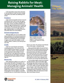 """Cover image of """"Living on The Land: Raising Rabbits for Meat—Managing Animals' Health"""""""