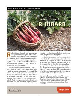 "Cover image of ""Grow Your Own Rhubarb"""