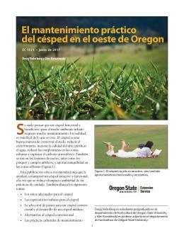 """Cover image of """"El mantenimiento práctico del césped en el oeste de Oregon"""""""
