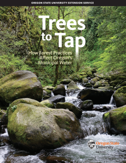 Trees to Tap cover file