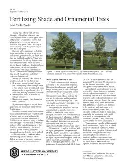Image of Fertilizing Shade and Ornamental Trees publication