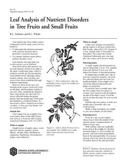 Image of Leaf Analysis of Nutrient Disorders in Tree Fruits and Small Fruits publication