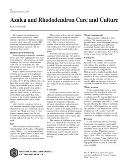 Image of Azalea and Rhododendron Care and Culture publication