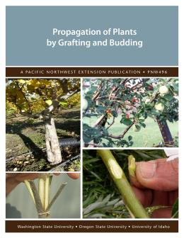 Image of Propagation of Plants by Grafting and Budding publication