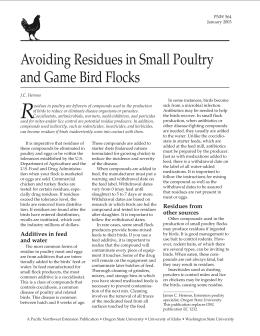 Image of Avoiding Residues in Small Poultry and Game Bird Flocks publication