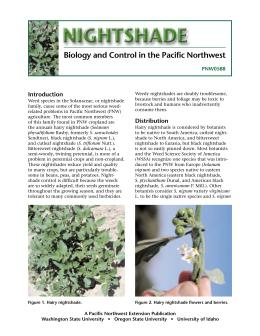 Image of Nightshade: Biology and Control in the Pacific Northwest publication