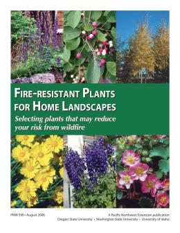 Image of Fire-Resistant Plants for Home Landscapes publication