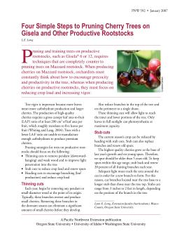 Image of Four Simple Steps to Pruning Cherry Trees on Gisela and Other Productive Rootstocks publication