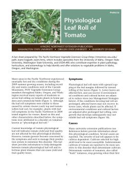 Cover image of Physiological Leaf Roll of Tomato publication