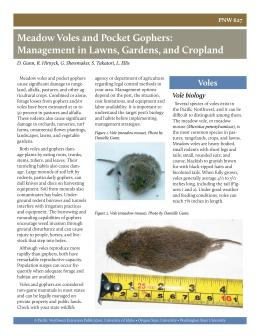 Image of Meadow Voles and Pocket Gophers: Management in Lawns, Gardens, and Croplands publication