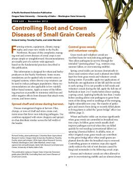 Image of Controlling Root and Crown Diseases of Small Grain Cereals publication