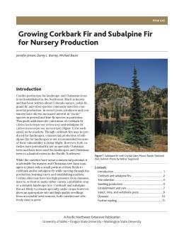 Image of Growing Corkbark Fir and Subalpine Fir for Nursery Production publication
