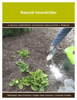 Image of Natural Insecticides  publication
