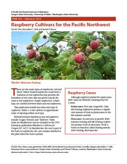 Image of Raspberry Cultivars for the Pacific Northwest publication