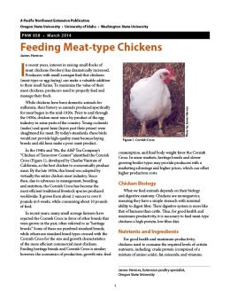 Image of Feeding Meat-Type Chickens publication