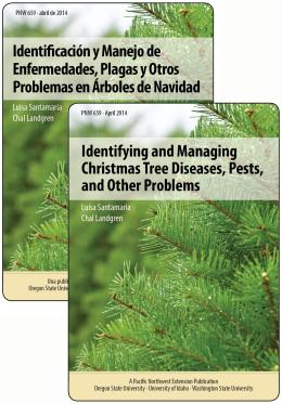 Image of Identifying and Managing Christmas Tree Diseases, Pests, and Other Problems (Identificación y Manejo de Enfermedades, Plagas y Otros  Problemas en Árboles de Navidad) publication