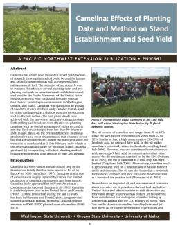 Image of Camelina: Effects of Planting Date and Method on Stand Establishment and Seed Yeild publication